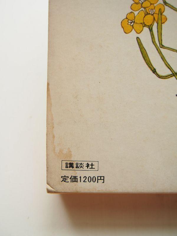 村上勉の画像 p1_31